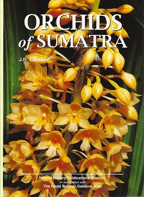 Image for Orchids of Sumatra