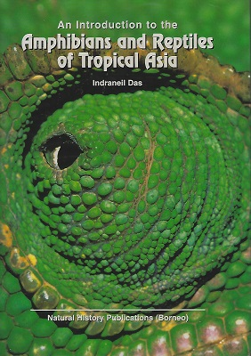 Image for An Introduction to the Amphibians and Reptiles of Tropical Asia