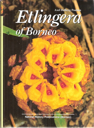 Image for Etlingera of Borneo
