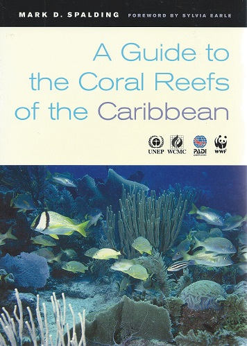 Image for A Guide to the Coral Reefs of the Caribbean