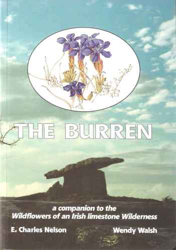 Image for The Burren - a Companion to the Wildflowers of an Irish Limestone Wilderness