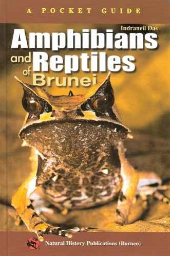Image for Amphibians and Reptiles of Brunei (A Pocket Guide)