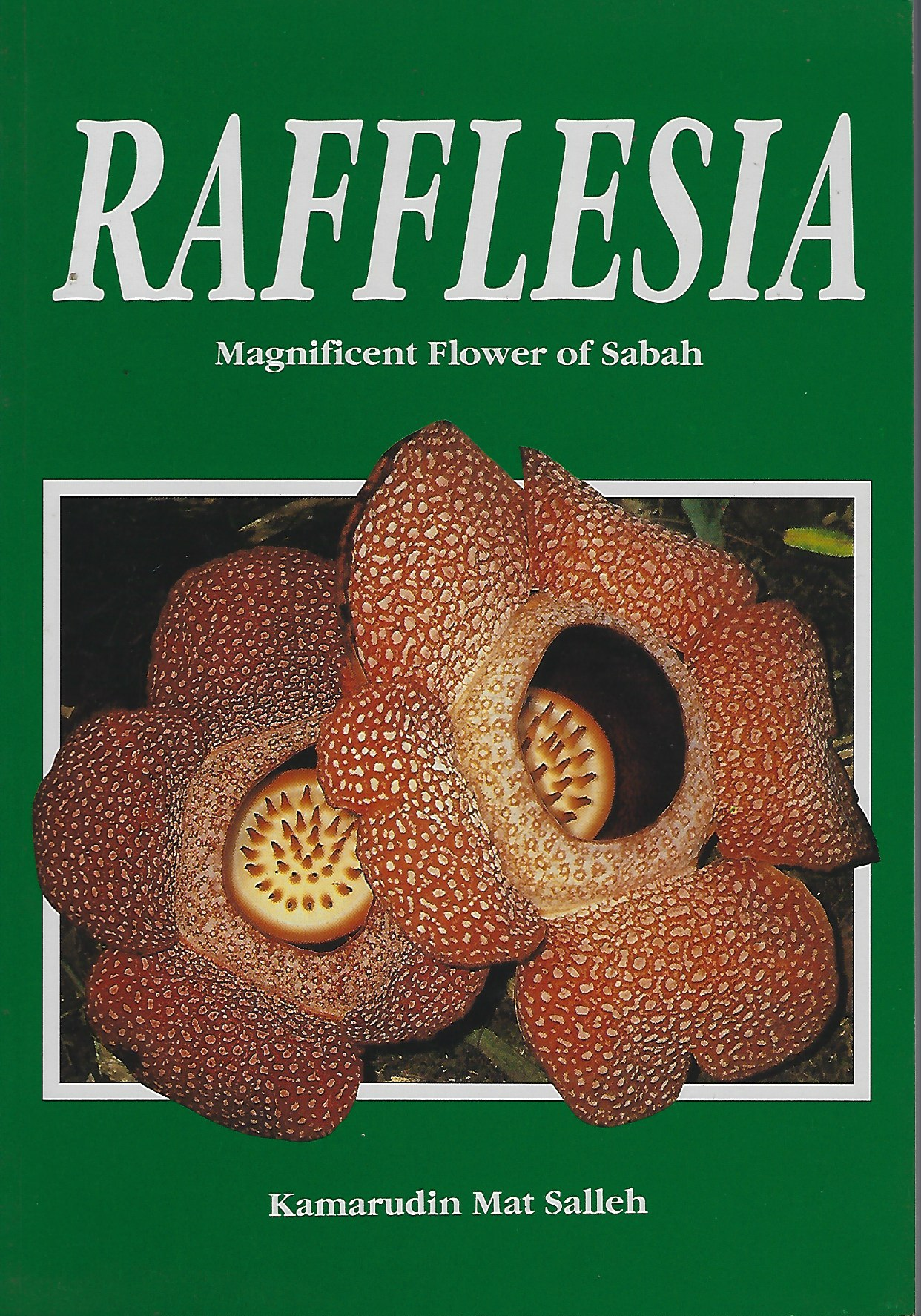 Image for Rafflesia - Magnificent Flower of Sabah