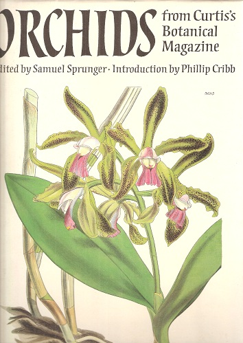 Image for Orchids From Curtis's Botanical Magazine
