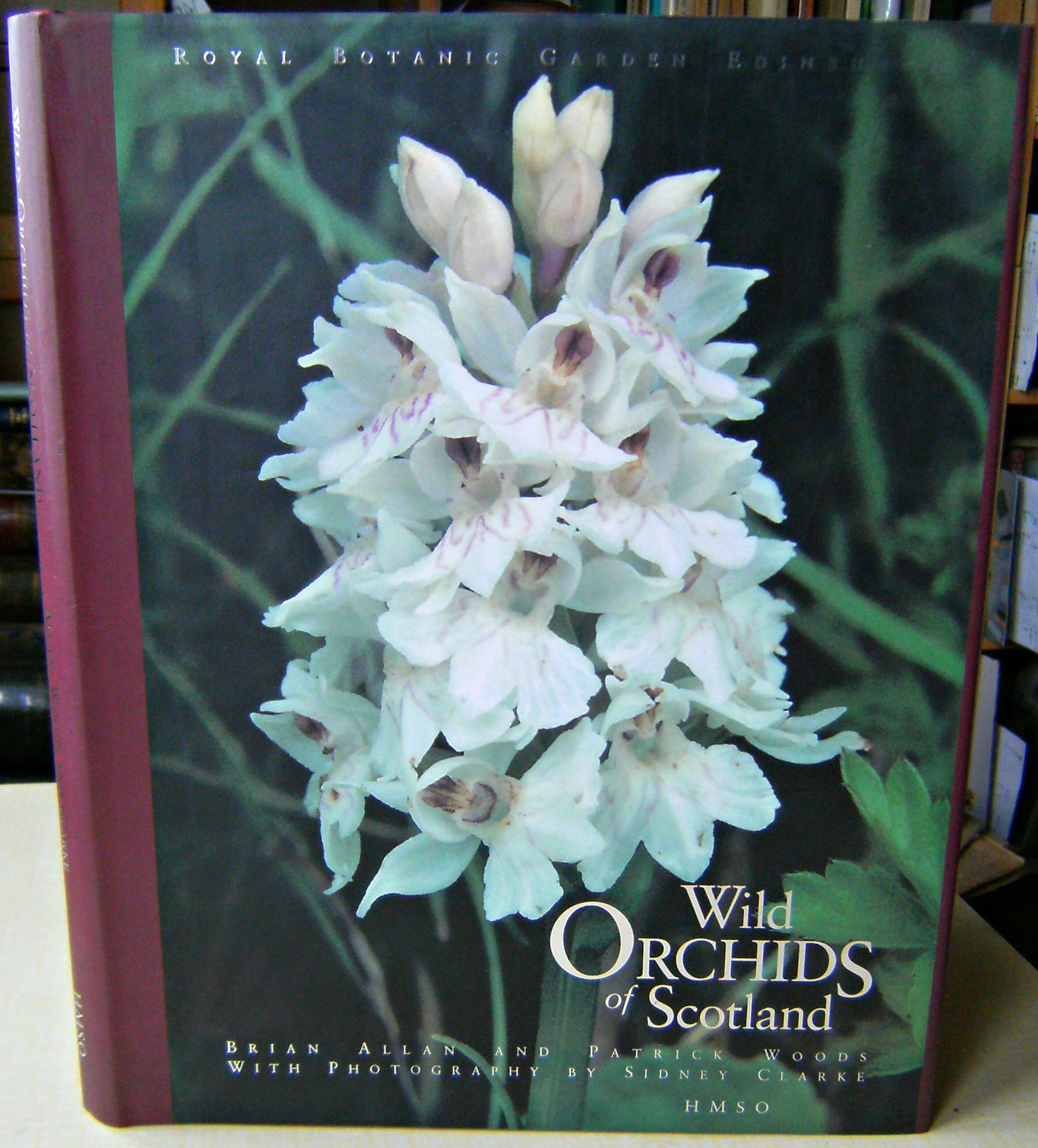 Image for Wild Orchids of Scotland
