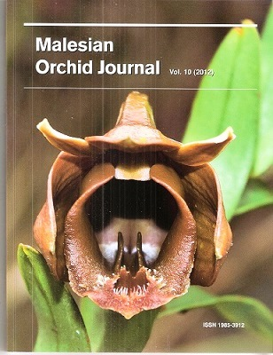 Image for Malesian Orchid Journal Volume 10