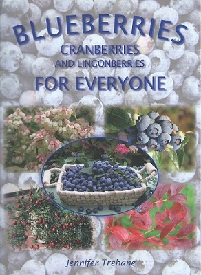 Image for Blueberries, Cranberries and Lingonberries for Everyone -a handbook for gardeners