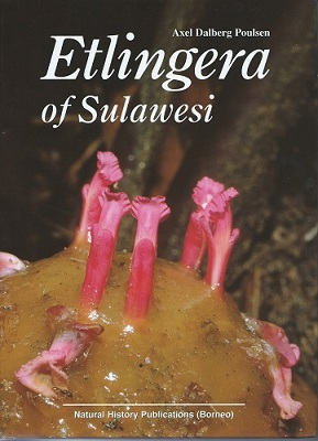 Image for Etlingera of Sulawesi