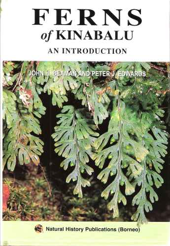Image for Ferns of Kinabalu - an introduction