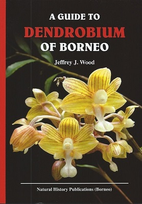 Image for A Guide to Dendrobium of Borneo