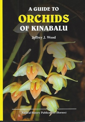 Image for A Guide to Orchids of Kinabalu