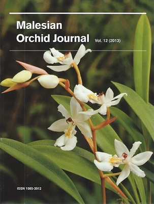 Image for Malesian Orchid Journal Volume 12