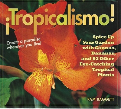 Image for Tropicalismo !