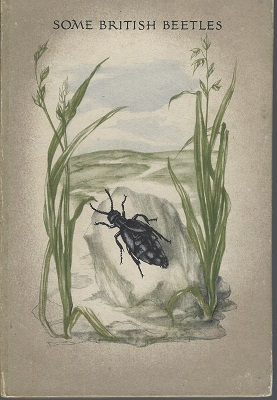 Image for Some British Beetles