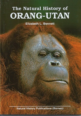Image for The Natural History of Orang-utan