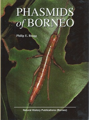 Image for Phasmids of Borneo