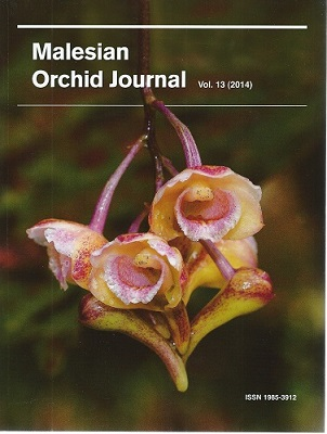Image for Malesian Orchid Journal Volume 13