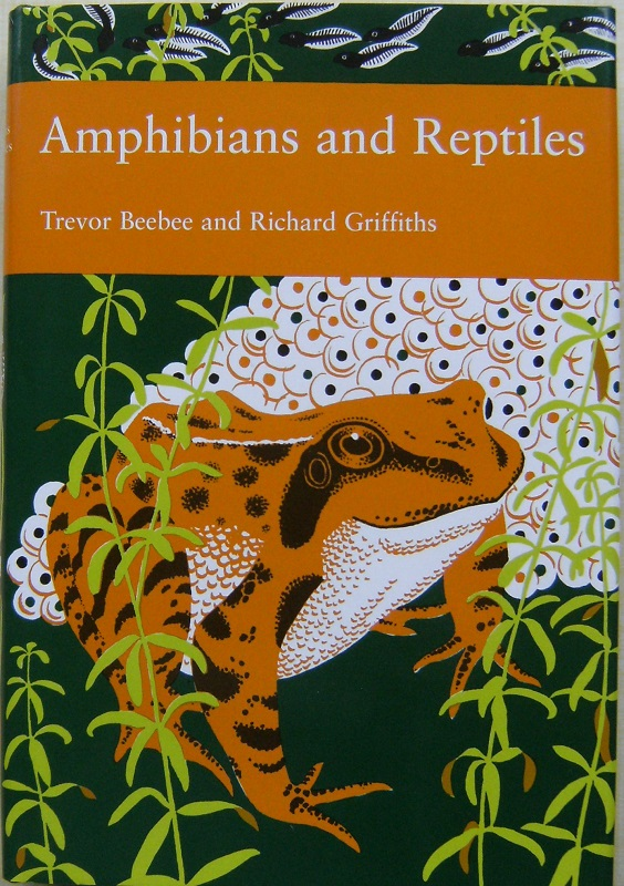 Image for Amphibians and Reptiles  (New Naturalist 87)