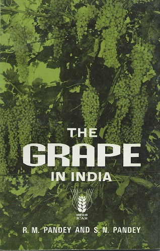 Image for The Grape in India