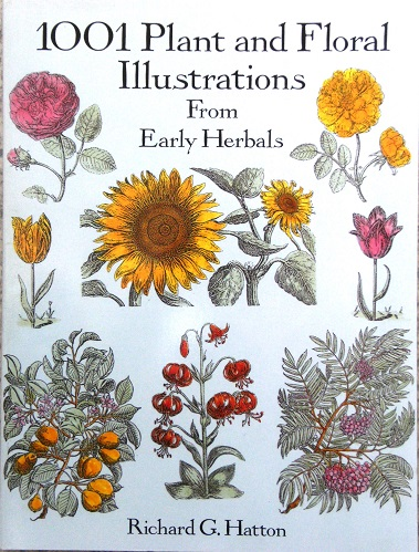 Image for 1001 Plant and Floral Illustrations from Early Herbals