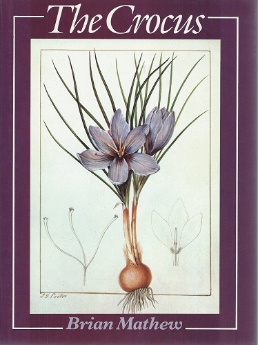 Image for The Crocus - a Revision of the Genus Crocus (Iridaceae) [Signed by author]