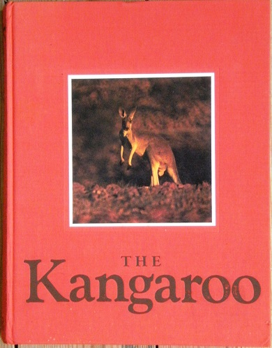 Image for The Kangaroo
