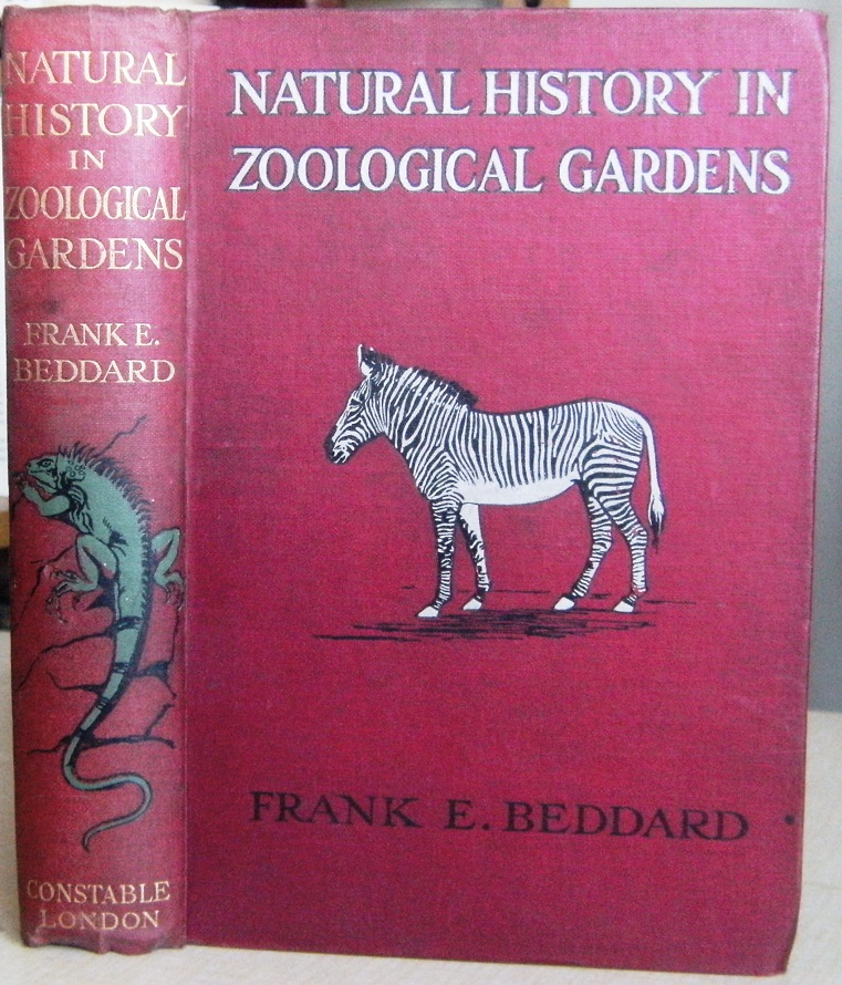 Image for Natural History in Zoological Gardens, being some account ov vertebrated animals, with special reference to those usually to be seen in the Zoological Society's Gardens in London and similar institutions