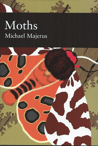 Image for Moths