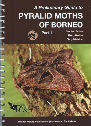 Image for A Preliminary Guide to the Pyralid Moths of Borneo, Part 1: Thyridoidea and Pyraloidea: Pyralidae