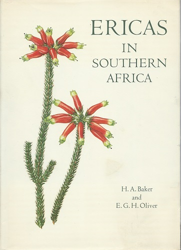 Image for Ericas in Southern Africa