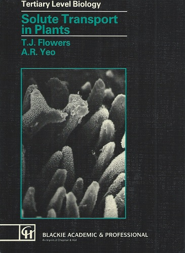 Image for Solute Transport in Flowers