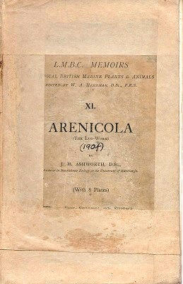 Image for Arenicola - the Lug-Worm (L.M.B.C. Memoirs on Typical British marine Plants and Animals, Number XXII)