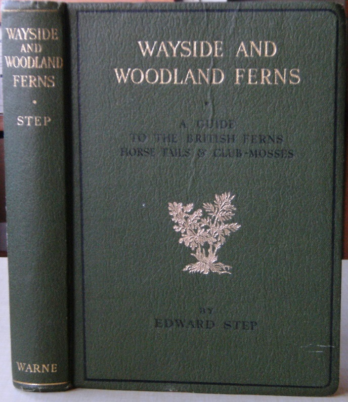 Image for Wayside & Woodland Ferns - a guide to the British  ferns, horsetails and club-mosses