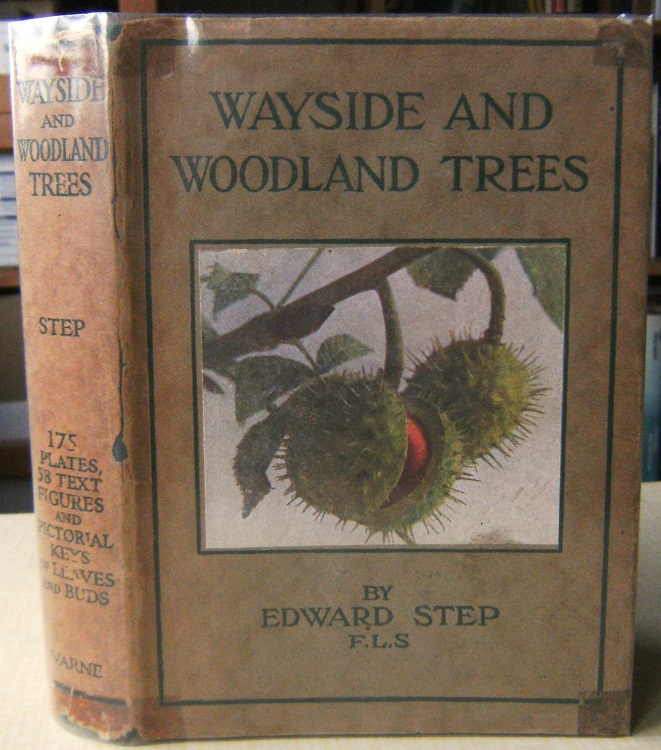 Image for Wayside & Woodland Trees - a guide to the British Sylva