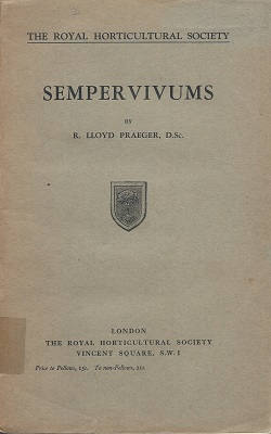 Image for An Account of the Sempervivum Group