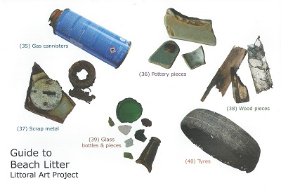 Image for Guide to Beach Litter