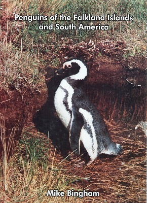 Image for Penguins of the Falkland Islands and South America