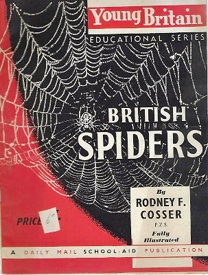 Image for British Spiders (Young Britain Educational Series)
