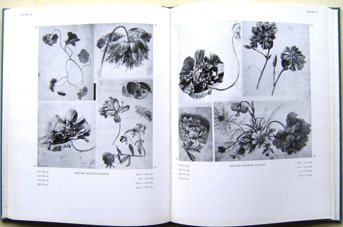 Image for The Flower Drawings of Jan van Huysum (W.T. Stearn's copy)