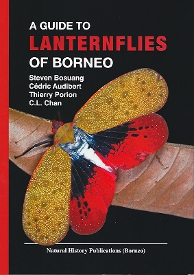 Image for A Guide to Lanternflies of Borneo