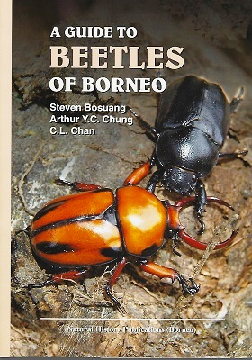Image for A Guide to the Beetles of Borneo