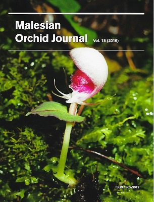 Image for Malesian Orchid Journal Volume 18