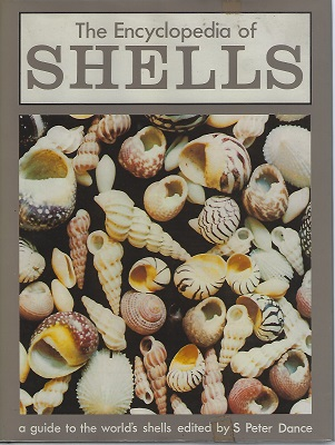 Image for The Encyclopedia of Shells