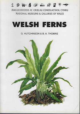Image for Welsh Ferns, Clubmosses, Quillworts and Horsetails: a descriptive handbook