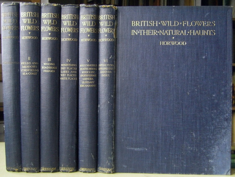 Image for A New British Flora - British Wild Flowers in Their Natural Haunts (6 volumes)