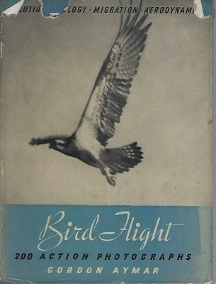 Image for Bird Flight - a collection of 200 action photographs (Richard Fitter's copy)