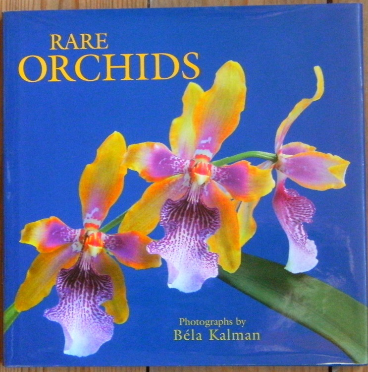 Image for Rare Orchids - photographs by Bela Kalman