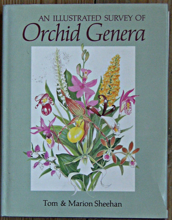 Image for An Illustrated Survey of Orchid Genera