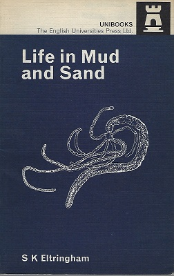 Image for Life in Mud and Sand