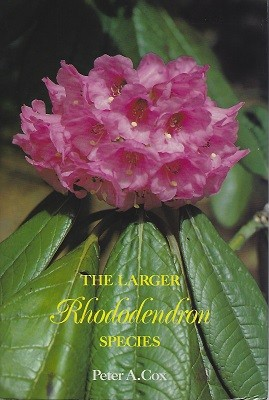 Image for The Larger Rhododendron Species